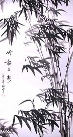 what_is_qigong_tai_chi_bamboo